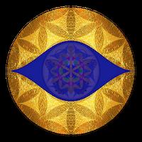 ViaDaan Logo